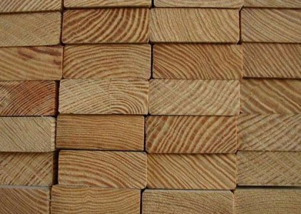 Supplier Kayu Kamper